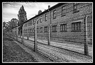 Auschwitz_Barbed_Wire_Fence.jpg